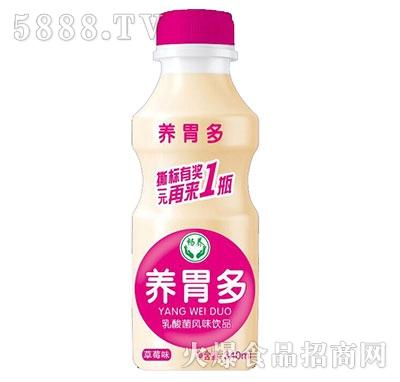 养胃多乳酸菌草莓味340ml