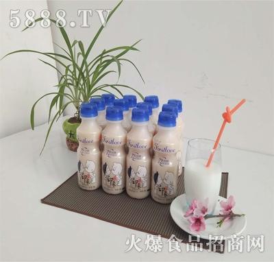 印象发酵乳酸菌饮品原味300ml