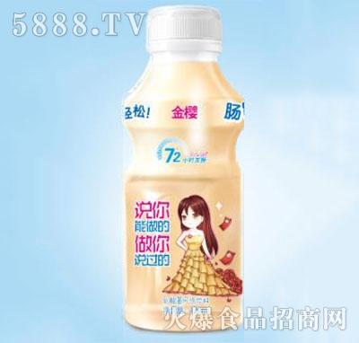 金樱活力菌乳酸菌饮品