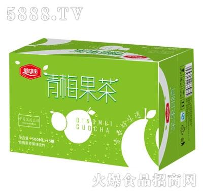 量动宝青梅果茶500mlX15