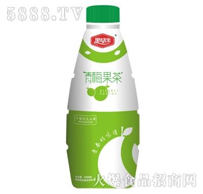 量动宝青梅果茶500ml