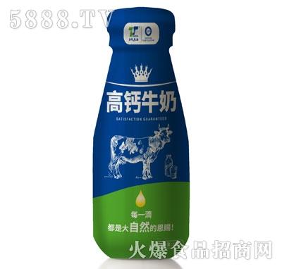 天太乳业高钙牛奶(瓶)