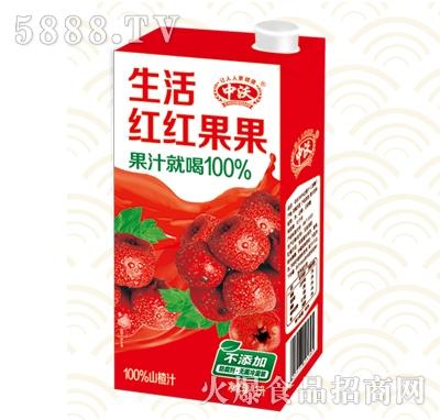 中沃山楂汁1L