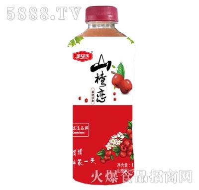 量动宝山楂恋山楂汁1L