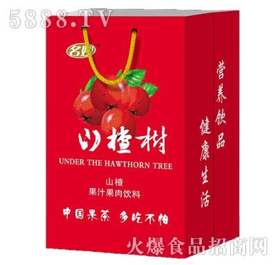 名妙山楂树山楂果汁果肉饮料礼盒装