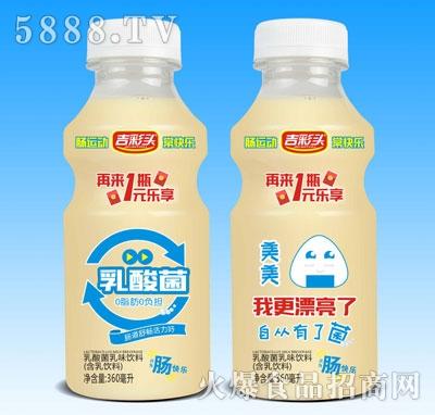 吉彩头美美乳酸菌乳味饮料360ml