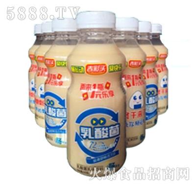 吉彩头乳酸菌乳味饮品360克