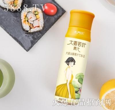水养乐大麦若叶青汁瓶装