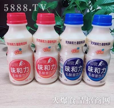畅饮味和李乳酸菌饮品340ml