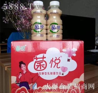 菌悦乳酸菌饮品(箱装)