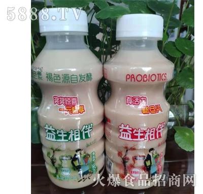 益生相伴乳酸菌饮品