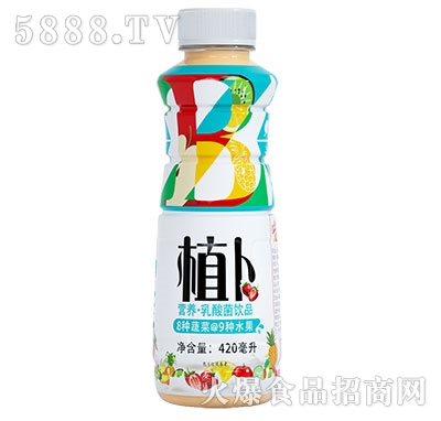 植卜营养型乳酸菌饮品