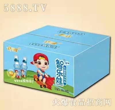 畅星乳酸菌风味饮品原味(箱)