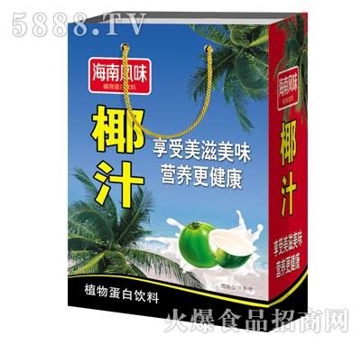 豪阳海南风味椰汁植物蛋白饮料(袋)