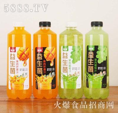 沁领益生菌果肉果汁1.18L