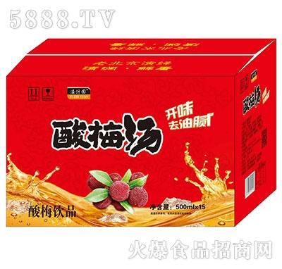 溢汁园酸梅汤500mlx15