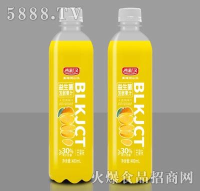 吉彩头益生菌发酵果汁芒果味480ml