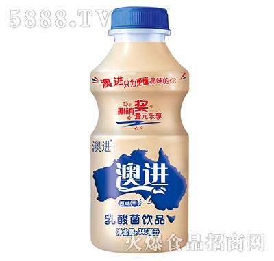 澳进乳酸菌饮品340ml原味