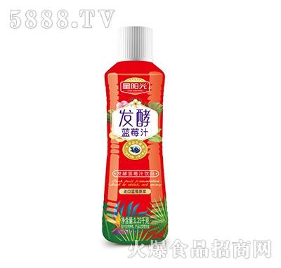 星阳光发酵蓝莓汁饮料1.25L