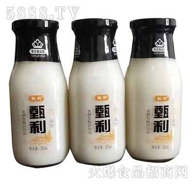 甄利原味发酵酸奶饮品300ml
