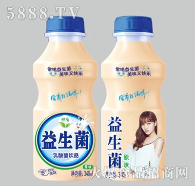 帅盾益生菌原味乳酸菌饮料340ml
