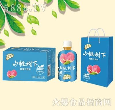 山桃树下桃果汁饮料350mlx15瓶