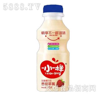 一小一样乳酸菌饮品香甜草莓340ml