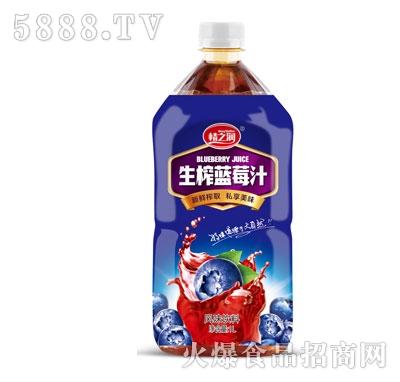 情之润生榨蓝莓汁1L