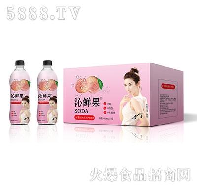 沁鲜果水蜜桃味苏打气泡水480ml×15瓶