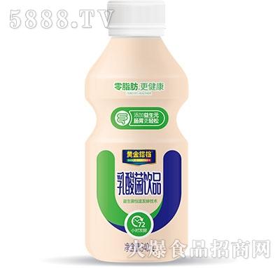 黄金搭档乳酸菌饮品340ml