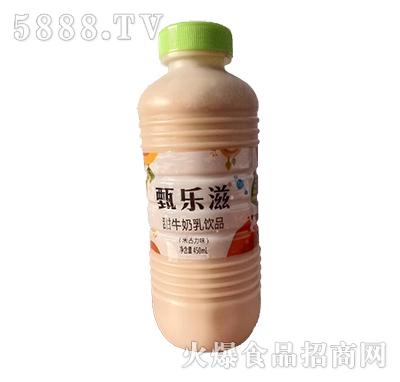 甄乐滋甜牛奶乳饮品朱古力味450ml