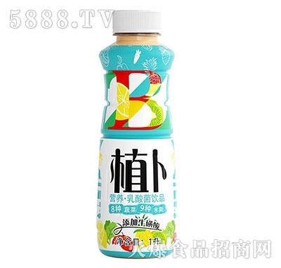 植卜果蔬乳酸菌饮品1L