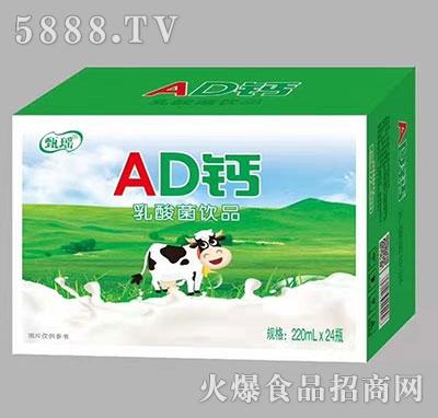 甄瑶AD钙乳酸菌饮品220ml×24瓶
