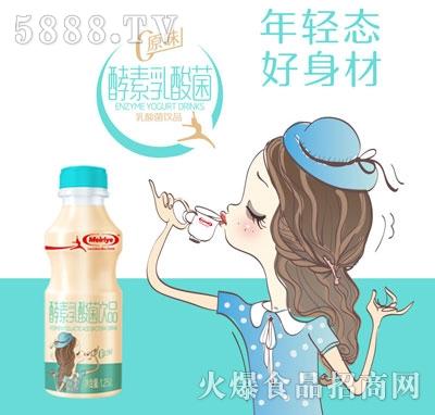 每日椰酵素乳酸菌饮品(瓶)