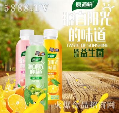 原道鲜果汁饮品500ml
