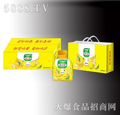 溢汁园香蕉果昔果味饮料礼盒