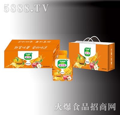 溢汁园芒果苹果果味饮料礼盒