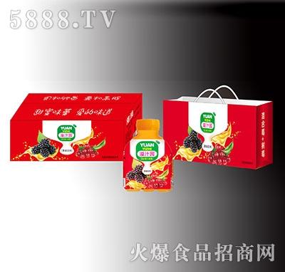 溢汁园混合莓果味饮料礼盒