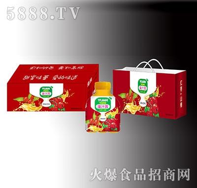 溢汁园红枣山楂果味饮料礼盒