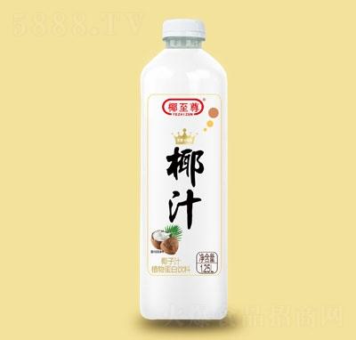 椰至尊椰子汁植物蛋白�料1.25L