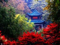 2017中国食品餐饮博览会游玩推荐―岳麓山