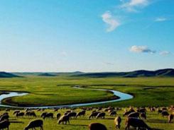 2019内蒙古食博会旅游推荐之呼伦贝尔大草原
