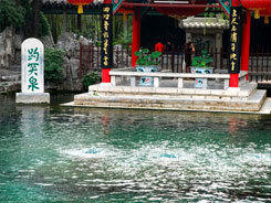 济南食品博览会旅游推荐