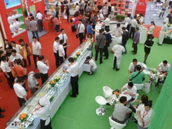 2020年漯河食品交易会什么时候举办