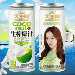 广东大王椰食品有限公司微企秀展示