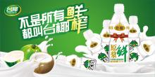 广东台椰食品有限公司