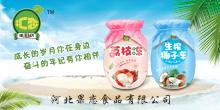 河北果恋食品有限公司