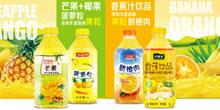东莞市沙加乐食品有限公司
