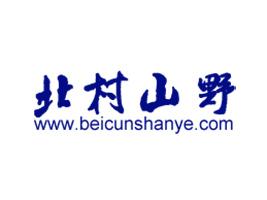 深圳市北村山野野生蓝莓制品有限公司
