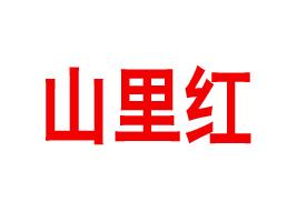 临朐县山里红食品厂